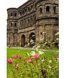 Flower, Porta Nigra