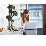 Office, Working, Entrepreneur