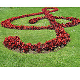 Flowers, Treble Clef, Landscape Gardening