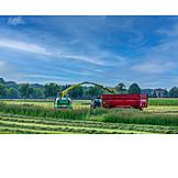 Agriculture, Grass, Häcksler